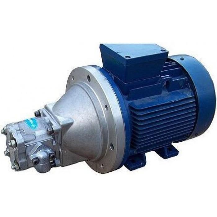 Насосный агрегат с НШ100 с электродвигателем на фланце